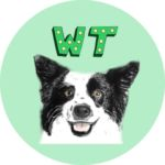 Wiggling Tails Dog Daycare